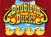 Double Up Ducks PJP